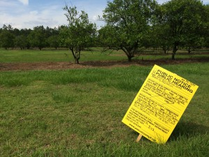 More agricultural land in northern Land O' Lakes could be history if Pasco County approves the rezoning of more than 68 acres just off Fletch Road south of Caliente Boulevard. Southern Crafted Homes wants to build 100 homes there off Curve Lake. (Staff photo by Michael Hinman)