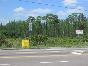 A pair of rezonings would transform land near the northeast corner of Van Dyke Road and North Dale Mabry Highway into planned developments that call for upscale homes, retail, office, multifamily and possibly congregate care uses. (File Photo)