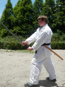 Ethan Dillon, 14, of Lutz, will represent the United States at the TAFISA World Martial Arts Games in September. (Michael Murillo/Staff Photo)