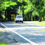 Lutz Lake Fern Road gets a smoother feel