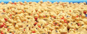 The rubber ducks, numbered on their underside, were adopted through donations. The owner of the duck that floated to first-place also won a bonus of $2,500. Some 68 prizes were awarded to the first ducks that floated to the finish line, out of a field of more than 2,000. (Fred Bellet/Photos)
