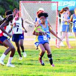 Several Pasco County schools to get lacrosse programs