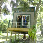 Tree house tutoring blossoms in nature