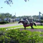 Development coming by Lexington Oaks
