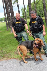 Pasco Sheriff's Office has new tool to track missing persons